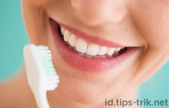 membersihkan menghilangkan karang gigi plak